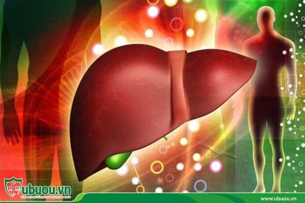Giai đoạn 2 có thể thực hiện phẫu thuật ghép gan