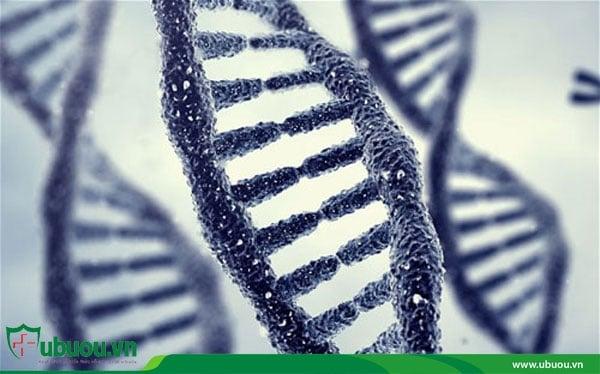 Di truyền có thể là một nguyên nhân gây ung thư