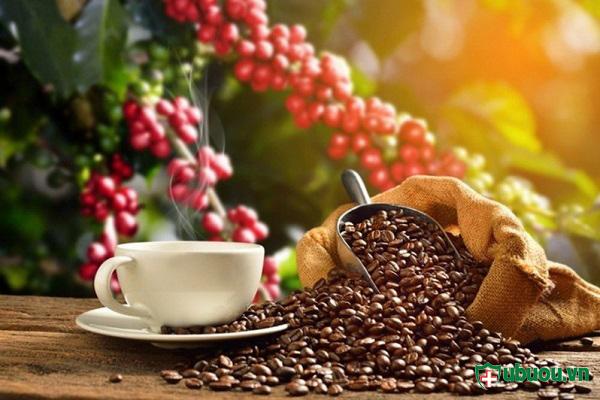 Uống cà phê làm ảnh hưởng tới quá trình điều trị bệnh K tuyến giáp