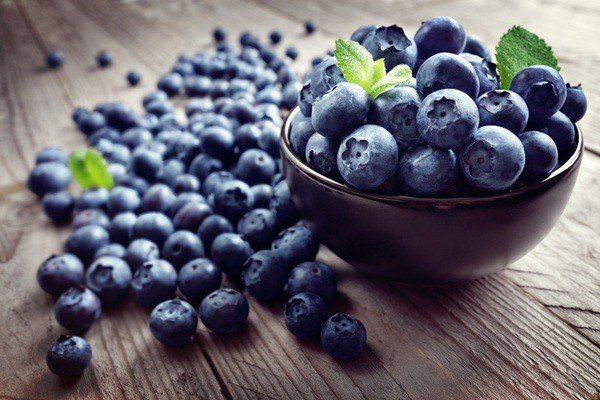 quả việt quất có nhiều vitamin bồi đỏ sức khỏe