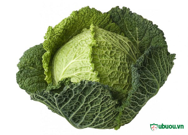 ăn bắp cải có nhiều chất dinh dưỡng phù hợp lại người bị ung thư