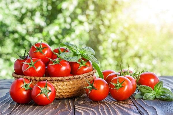 Cà chua có nhiều vitamin bồi đỏ sức khỏe