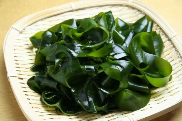 hình ảnh tảo xoắn Spirulia