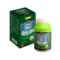 Vì sao sau tuổi 35 phụ nữ nên sử dụng Ancan để phòng ngừa U xơ