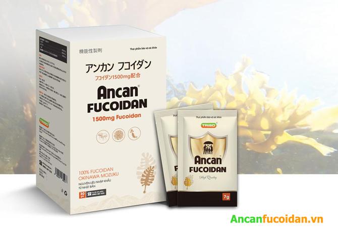 Tại sao thành phần của Ancan Fucoidan 1500mg lại được đánh giá cao?